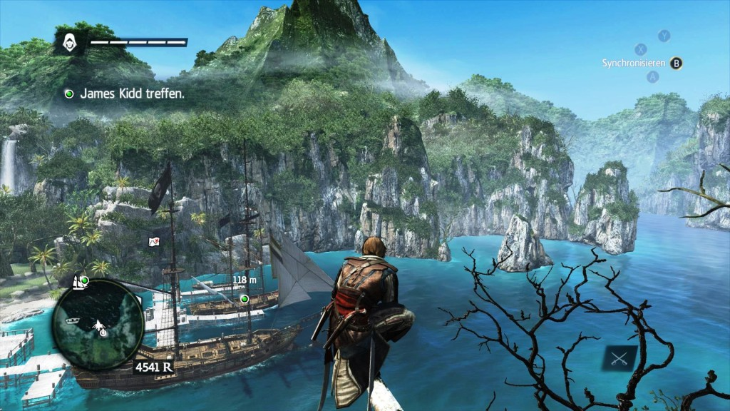 Assassin's Creed IV Black Flag 1